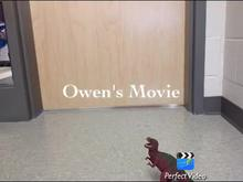 Owen's Movie