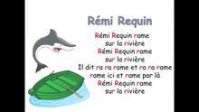 Rémi Requin