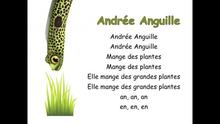 Andree anguille